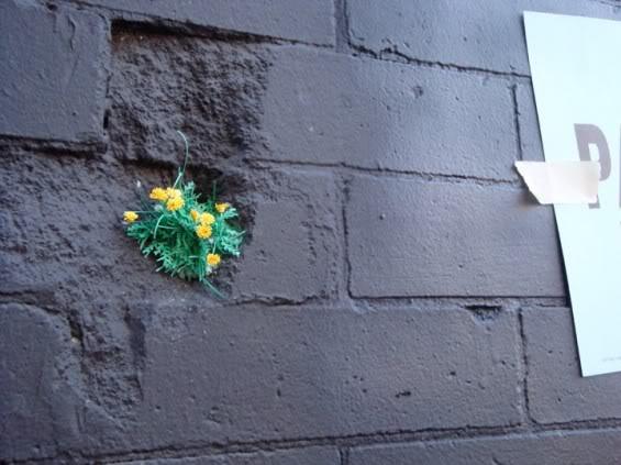 weed grafitti