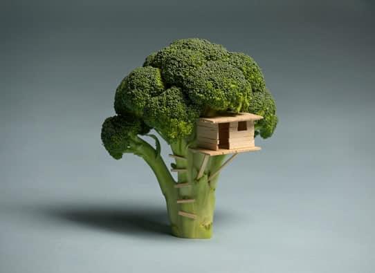 Broccoli House, http://www.itistheworldthatmadeyousmall.com/projects/broccoli-house/