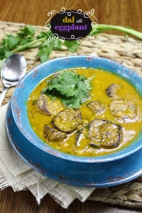 dal, yellow split pea soup with chinese eggplant or aubergine