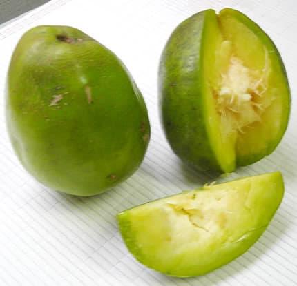 Fruit Citere chutney