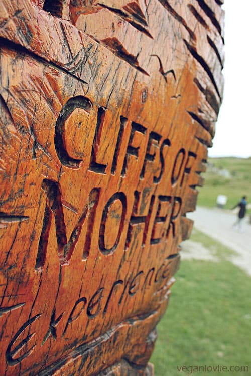 Cliffs of Moher, Galway, Ireland